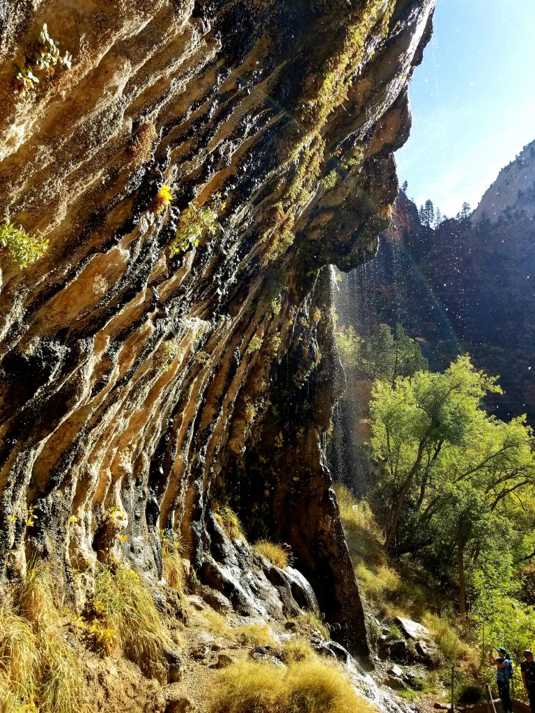 Rock at Zion National Park