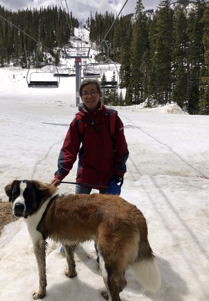 Taos Ski Valley person dog and chairlift