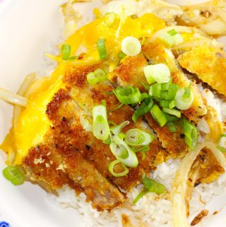 Katsudon and Rice Bowl