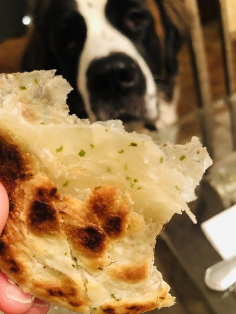 Toby and onion paratha